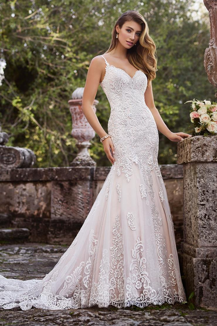 Francesca Beautiful Lace on Tulle Over Satin Trumpet Gown