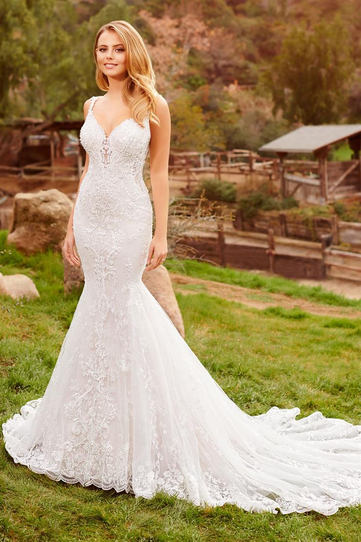 Avalon Sexy lace and organza mermaid gown