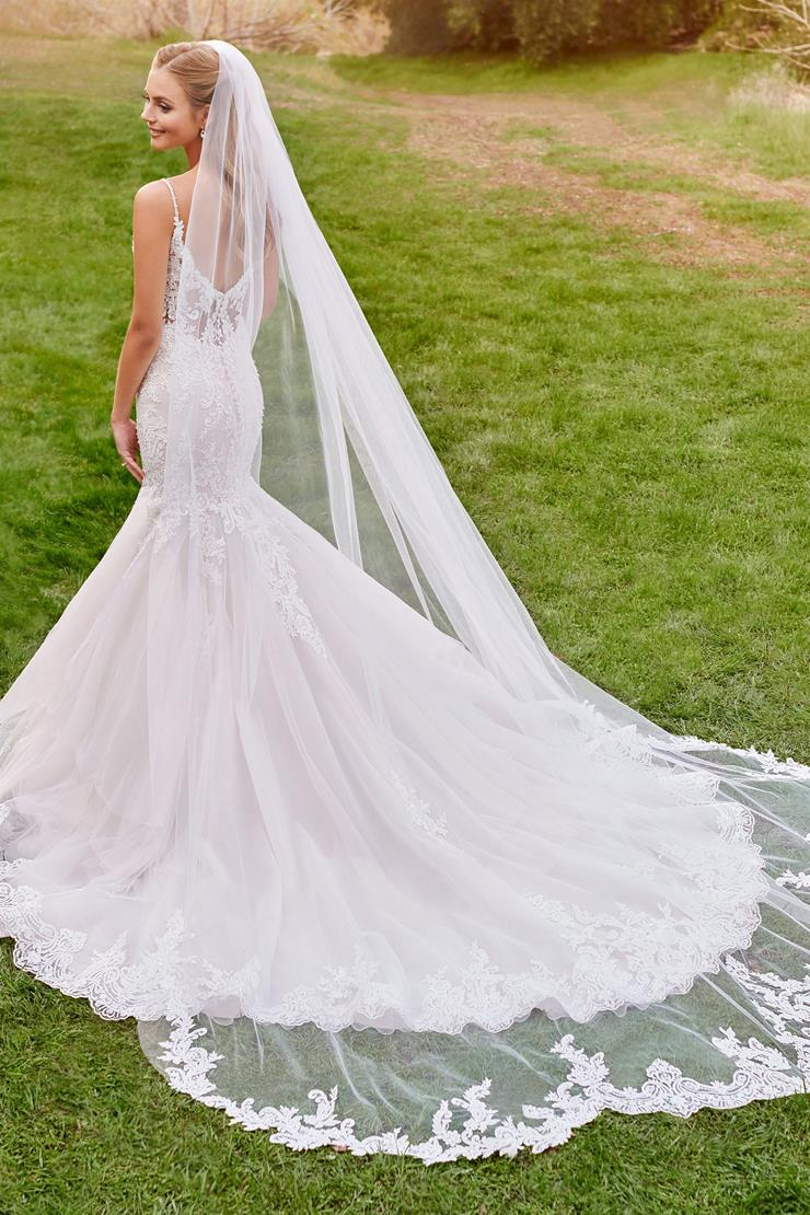 Terra Veil Lace and tulle cathedral length veil