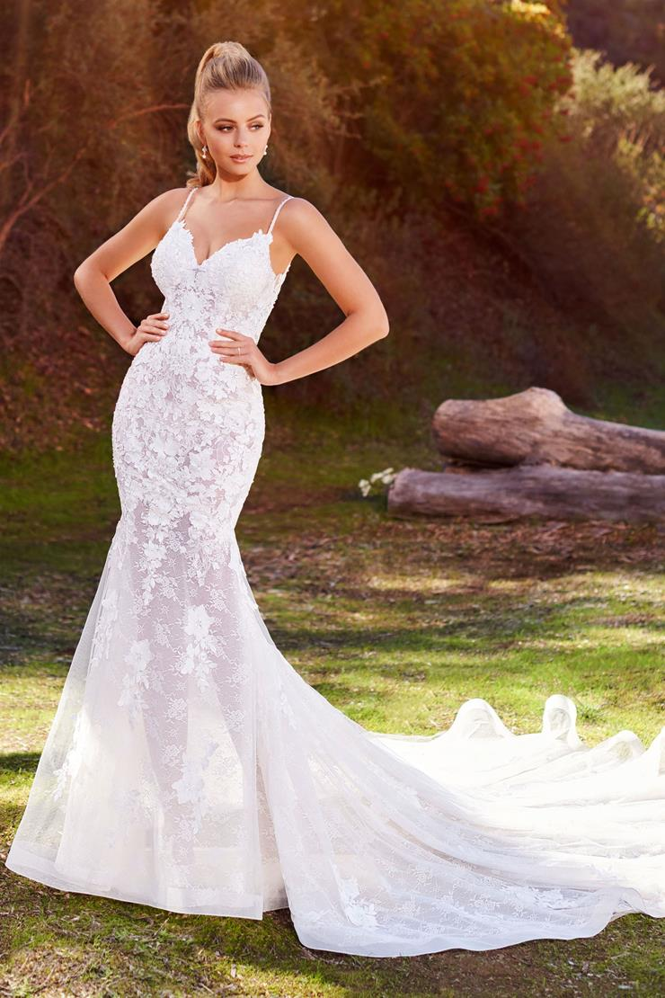 Daryn Chic mermaid gown with bold floral lace embroidery